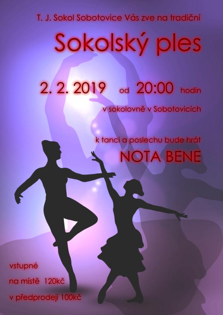 Plakát na ples v Sobotovicích 2019