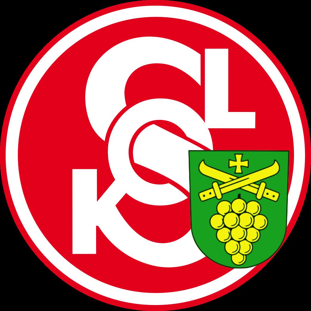 Sokol Sobotovice